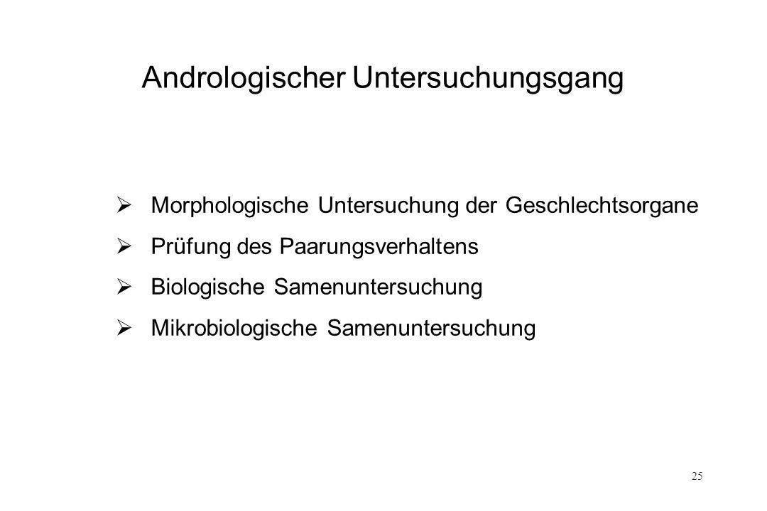 Andrologischer Untersuchungsgang