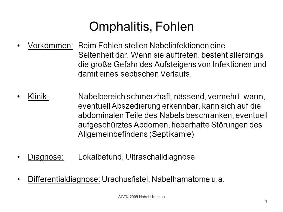 Omphalitis, Fohlen