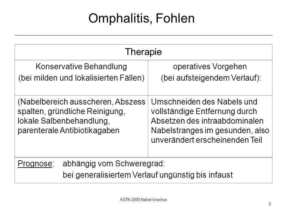 Omphalitis, Fohlen Therapie Konservative Behandlung