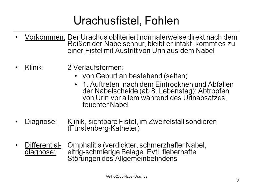Urachusfistel, Fohlen