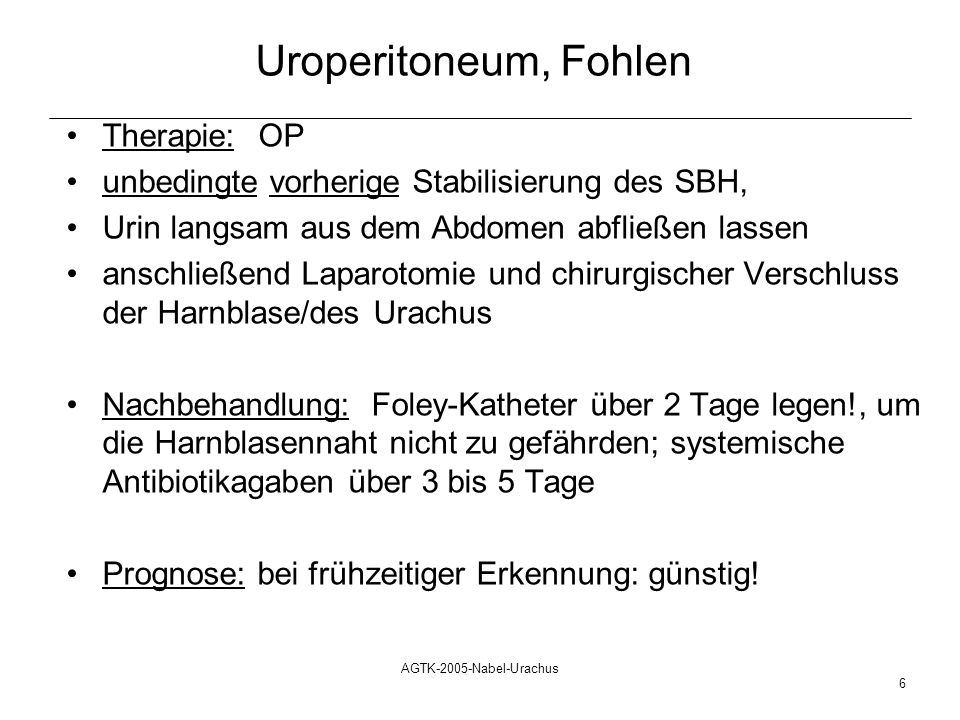 Uroperitoneum, Fohlen Therapie: OP