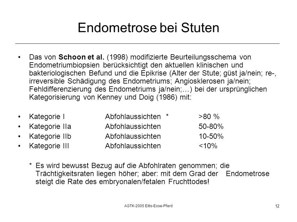 Endometrose bei Stuten