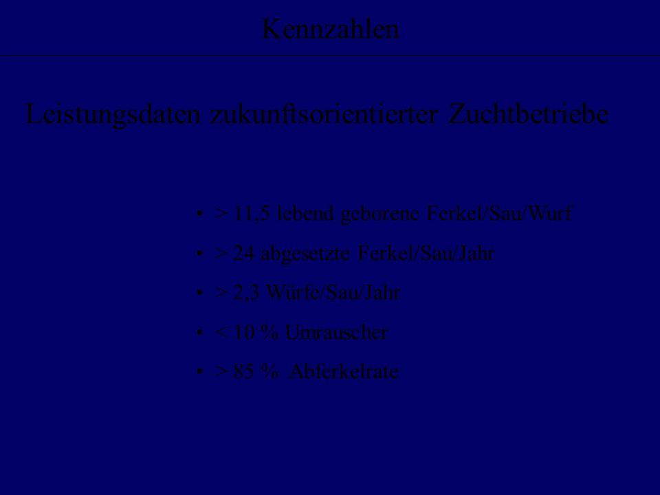Leistungsdaten zukunftsorientierter Zuchtbetriebe