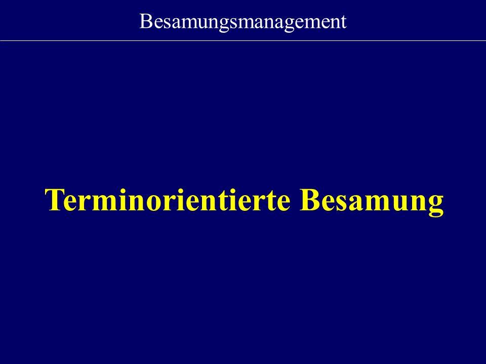 Terminorientierte Besamung
