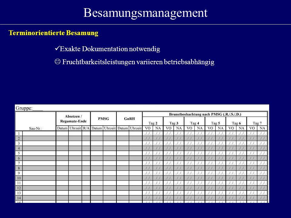 Besamungsmanagement Terminorientierte Besamung