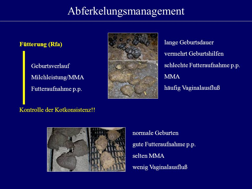 Abferkelungsmanagement