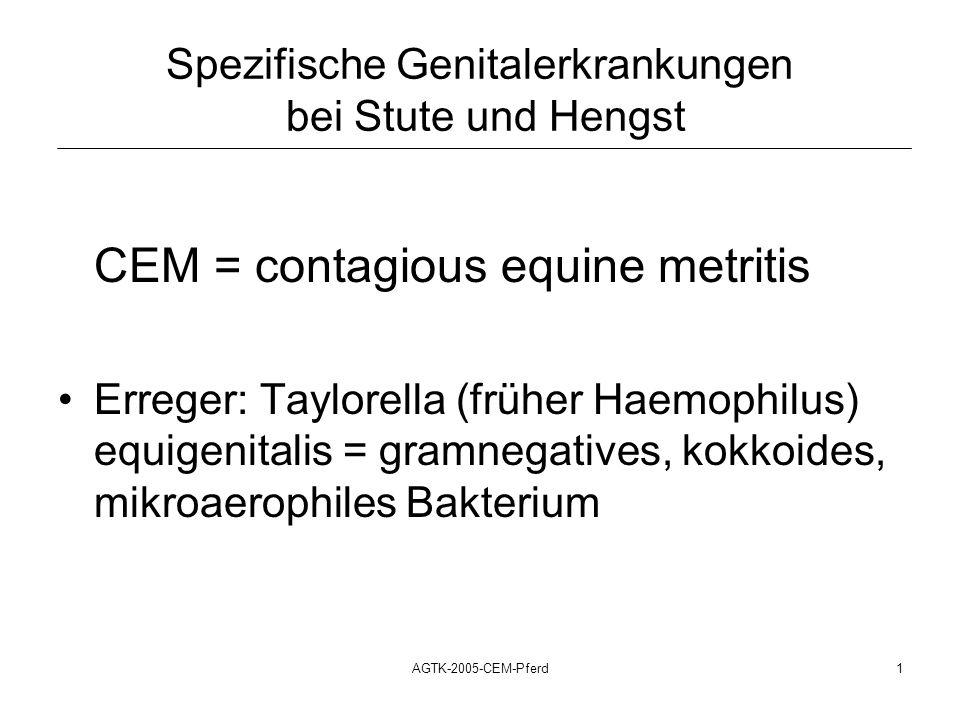 Spezifische Genitalerkrankungen bei Stute und Hengst
