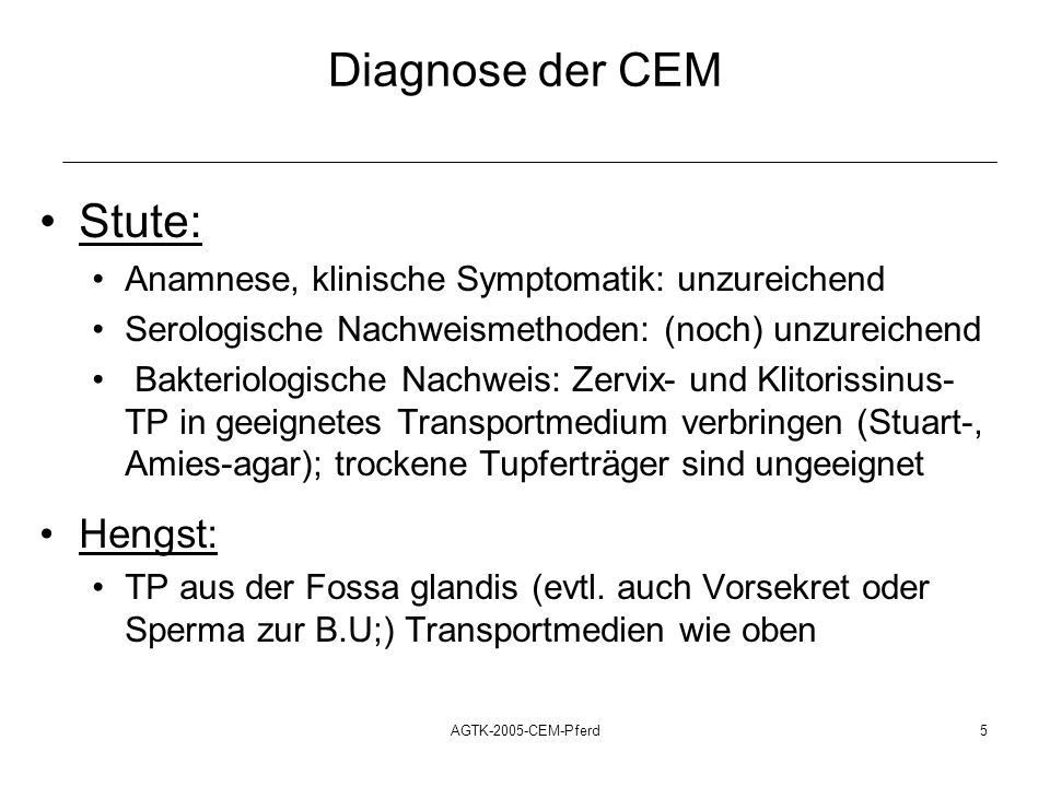 Diagnose der CEM Stute: Hengst: