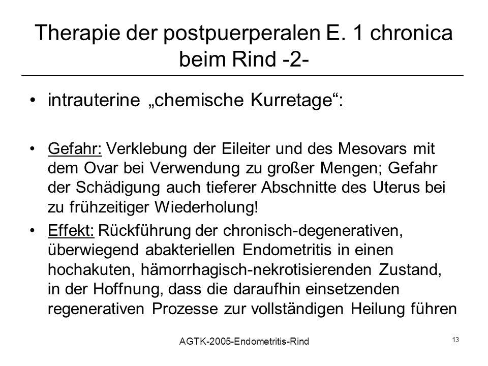 Therapie der postpuerperalen E. 1 chronica beim Rind -2-