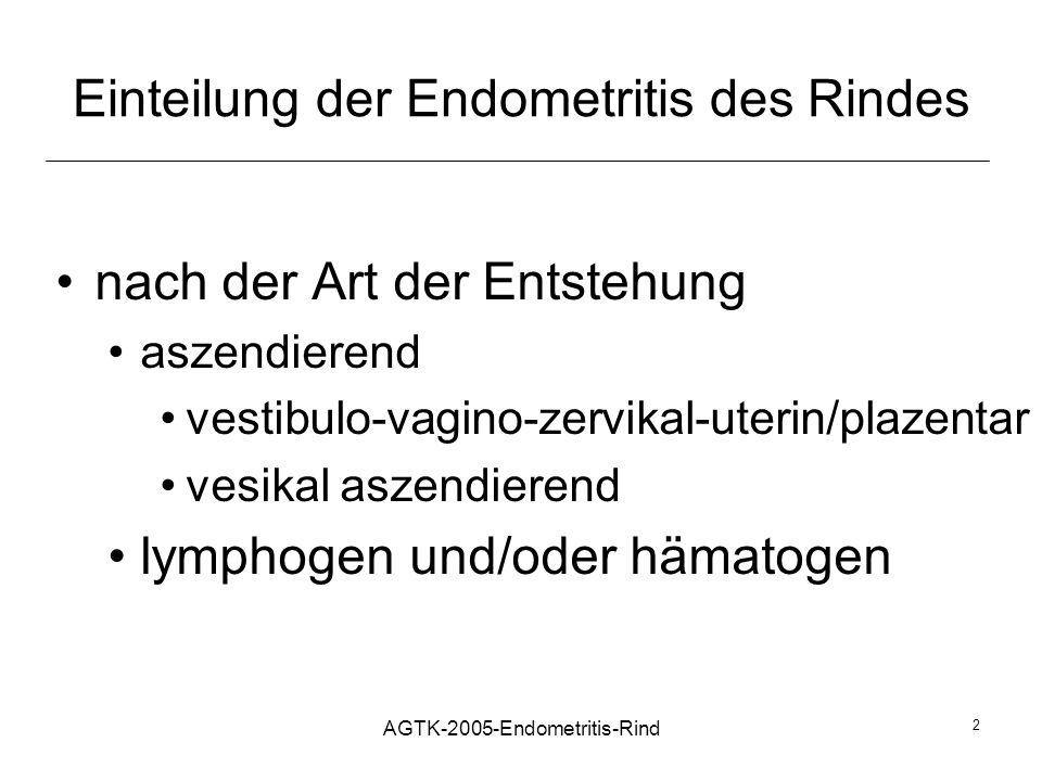 Einteilung der Endometritis des Rindes