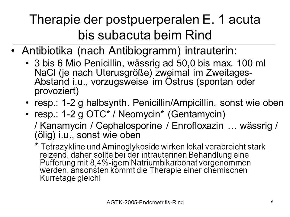 Therapie der postpuerperalen E. 1 acuta bis subacuta beim Rind