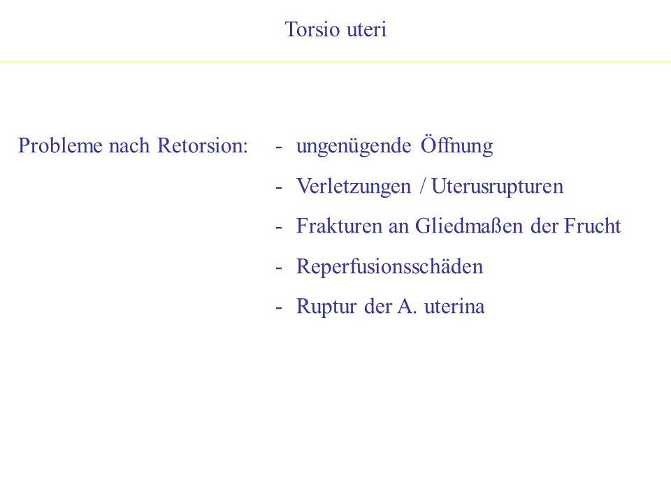 Torsio uteri Probleme nach Retorsion: ungenügende Öffnung. Verletzungen / Uterusrupturen. Frakturen an Gliedmaßen der Frucht.
