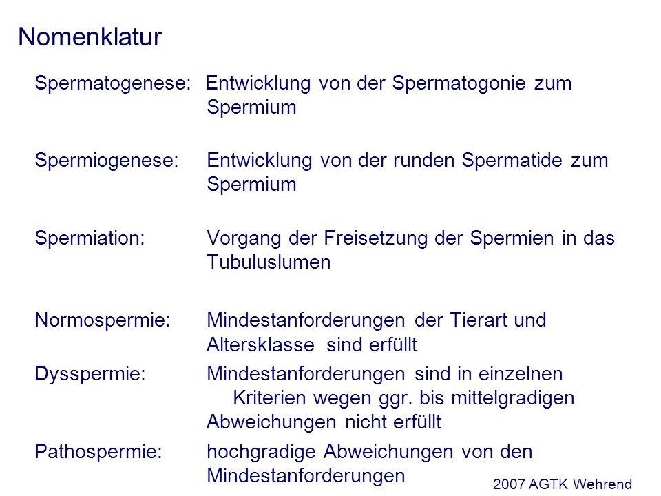 Nomenklatur Spermatogenese: Entwicklung von der Spermatogonie zum Spermium. Spermiogenese: Entwicklung von der runden Spermatide zum Spermium.