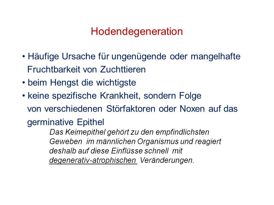 Hodendegeneration Häufige Ursache für ungenügende oder mangelhafte