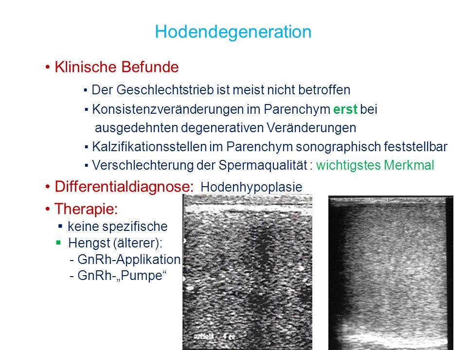 Hodendegeneration Klinische Befunde