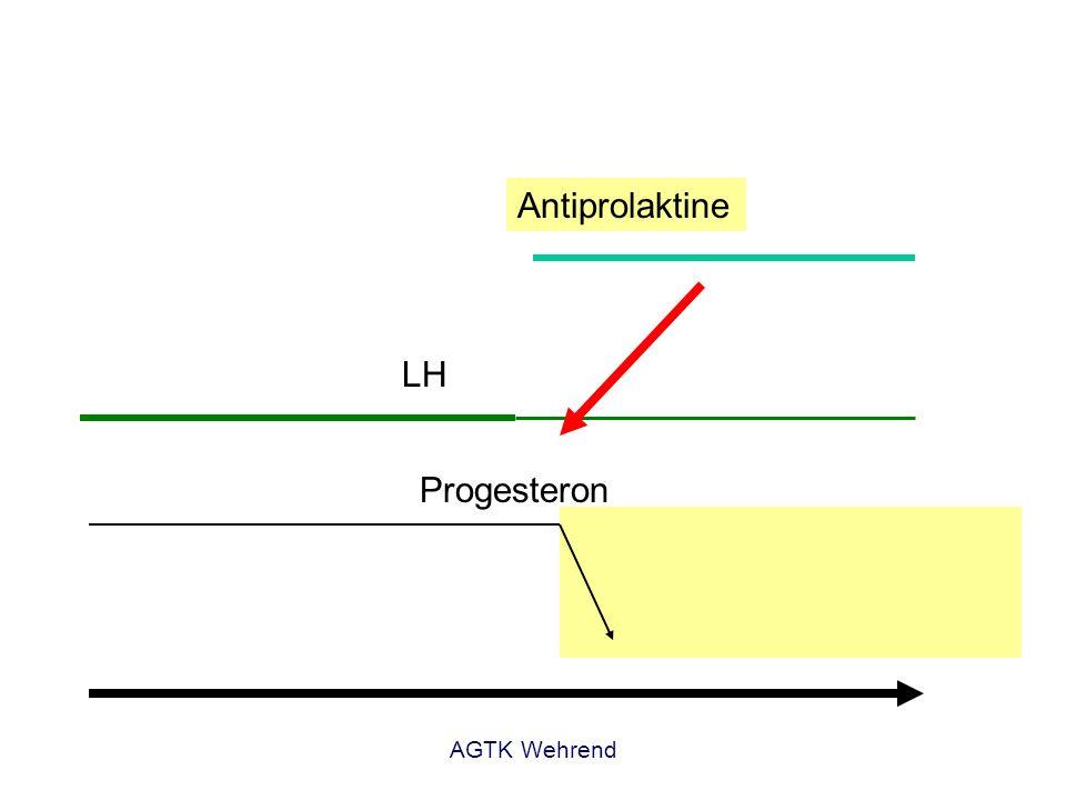 Prolaktin Antiprolaktine LH Progesteron AGTK Wehrend