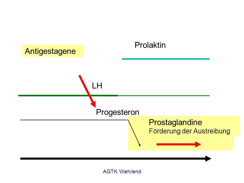 Prostaglandine Förderung der Austreibung