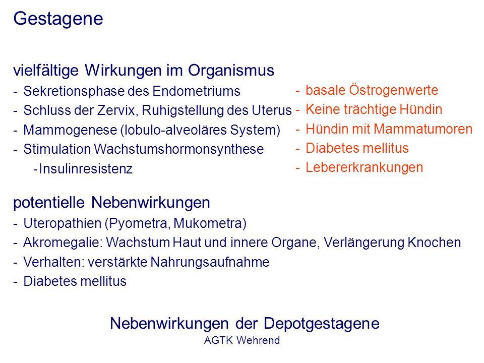 Gestagene vielfältige Wirkungen im Organismus