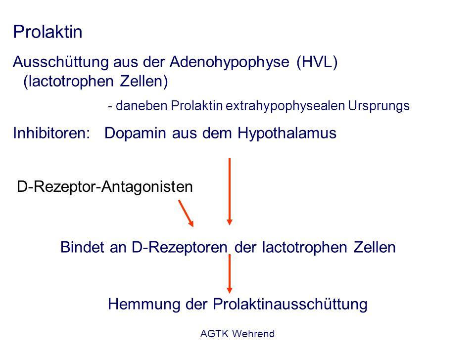 Prolaktin Ausschüttung aus der Adenohypophyse (HVL) (lactotrophen Zellen) - daneben Prolaktin extrahypophysealen Ursprungs.