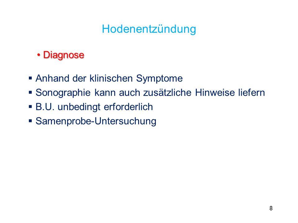 Hodenentzündung Diagnose Anhand der klinischen Symptome