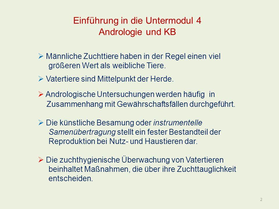 Einführung in die Untermodul 4 Andrologie und KB