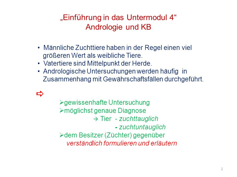 """""""Einführung in das Untermodul 4 Andrologie und KB"""