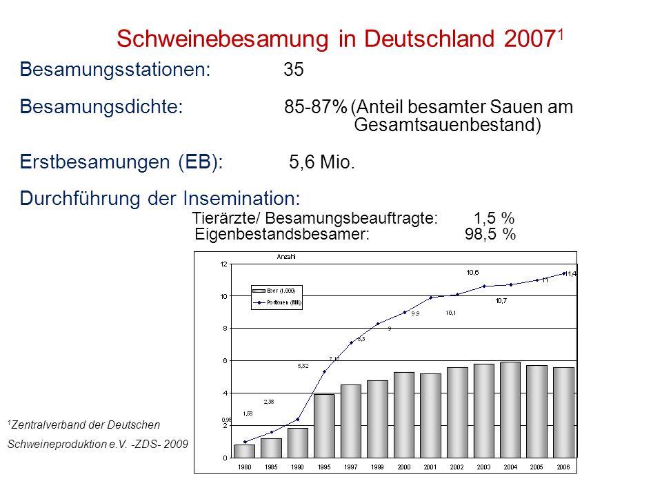 Schweinebesamung in Deutschland 20071