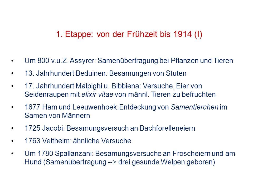 1. Etappe: von der Frühzeit bis 1914 (I)