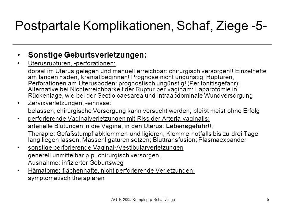 Postpartale Komplikationen, Schaf, Ziege -5-