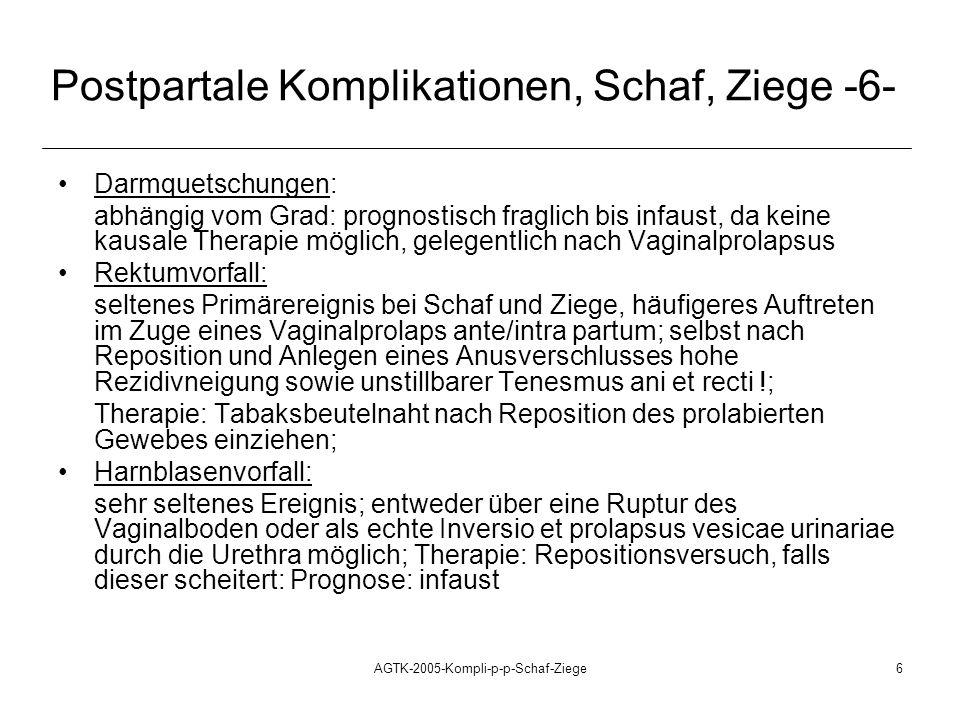 Postpartale Komplikationen, Schaf, Ziege -6-