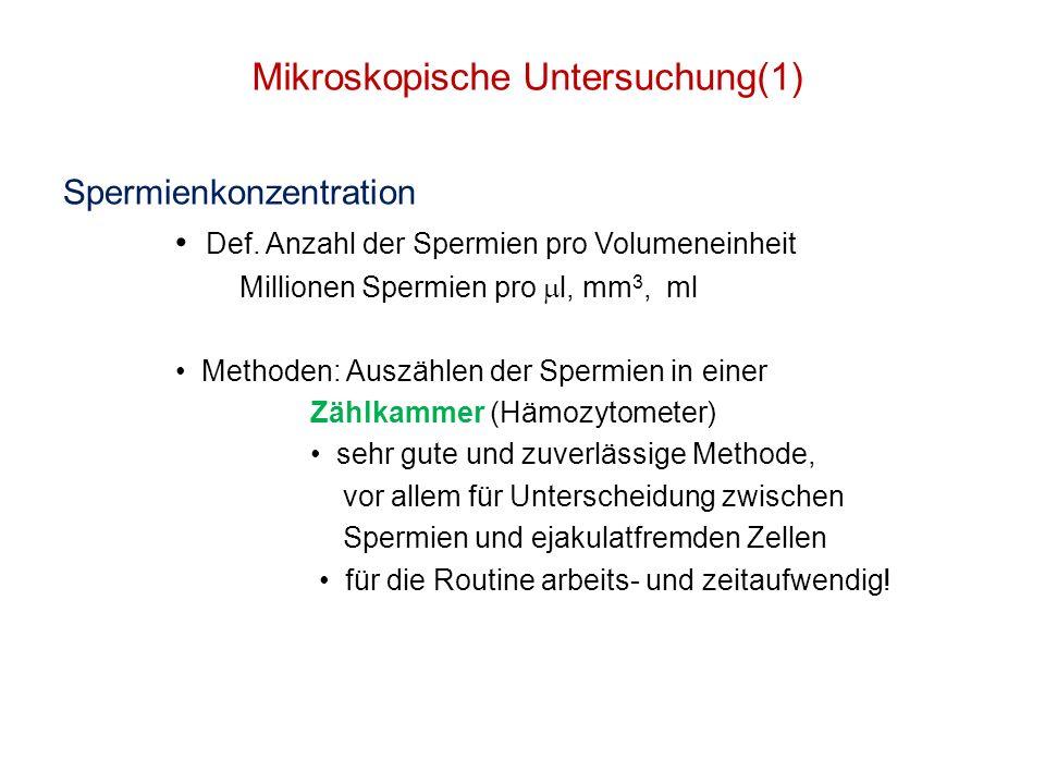 Mikroskopische Untersuchung(1)