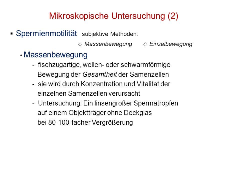 Mikroskopische Untersuchung (2)