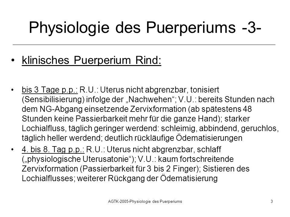 Physiologie des Puerperiums -3-