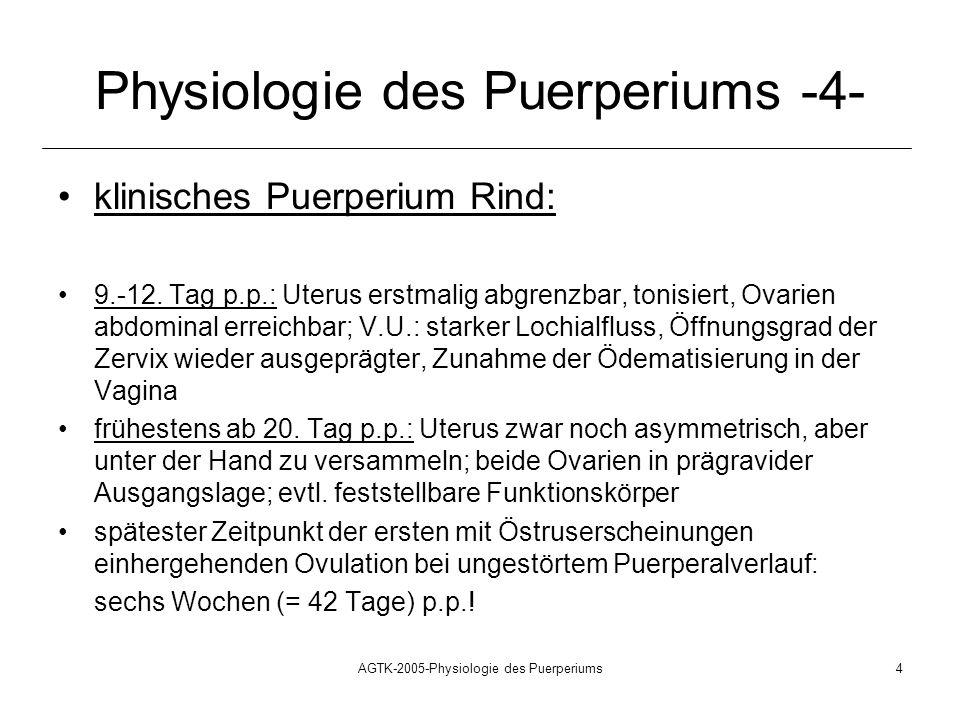 Physiologie des Puerperiums -4-