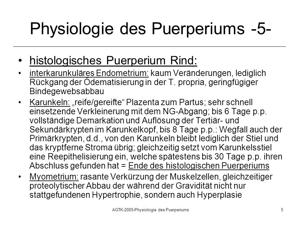 Physiologie des Puerperiums -5-