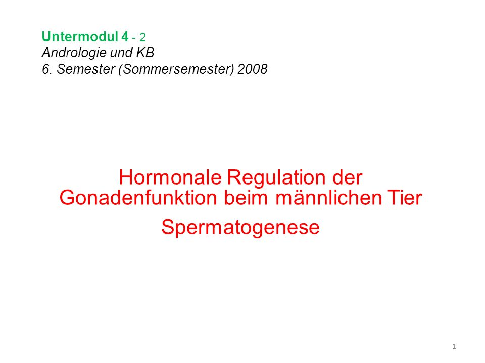 Untermodul 4 - 2 Andrologie und KB 6. Semester (Sommersemester) 2008