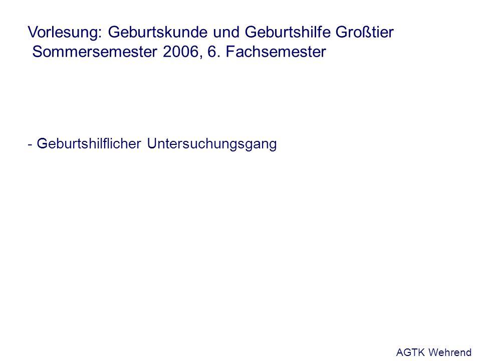 Vorlesung: Geburtskunde und Geburtshilfe Großtier Sommersemester 2006, 6. Fachsemester