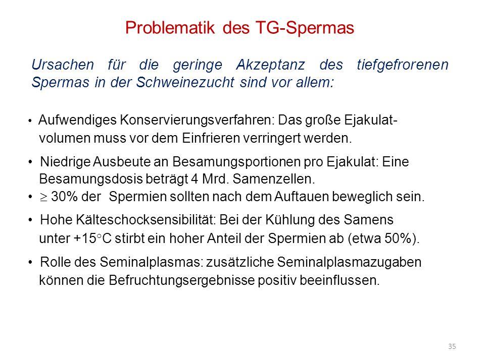 Problematik des TG-Spermas