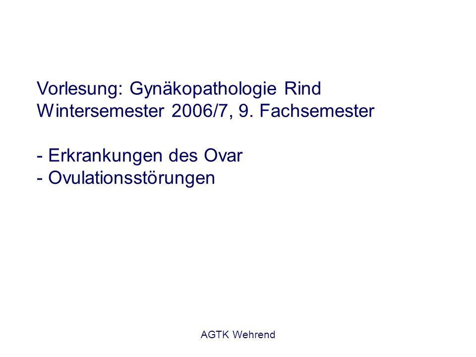 Vorlesung: Gynäkopathologie Rind Wintersemester 2006/7, 9
