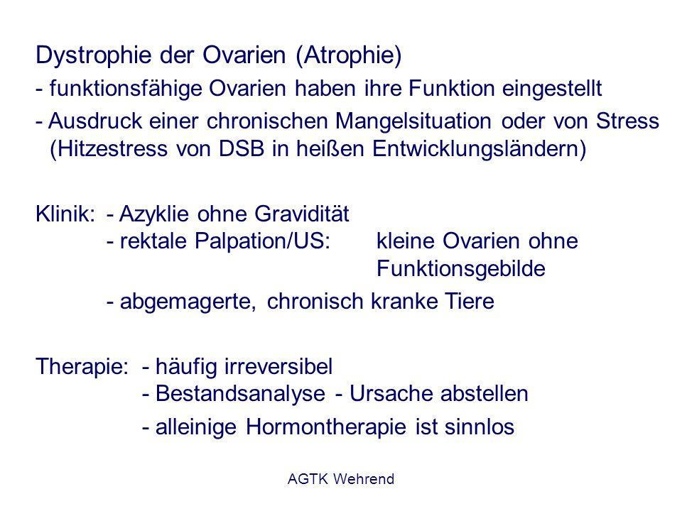 Dystrophie der Ovarien (Atrophie)