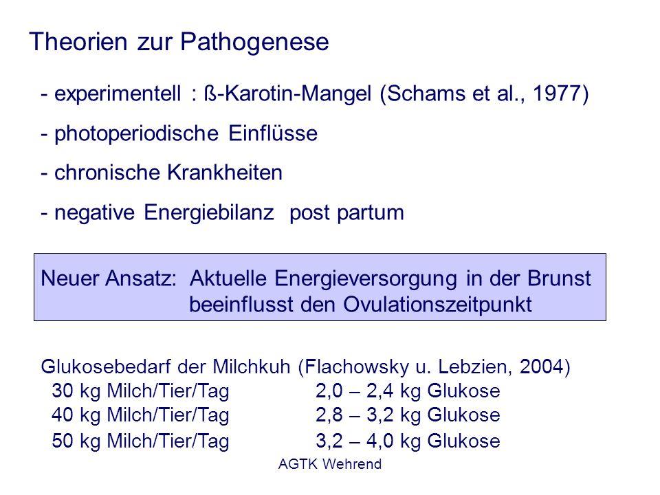 Theorien zur Pathogenese