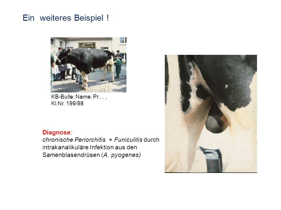 Ein weiteres Beispiel ! Diagnose:
