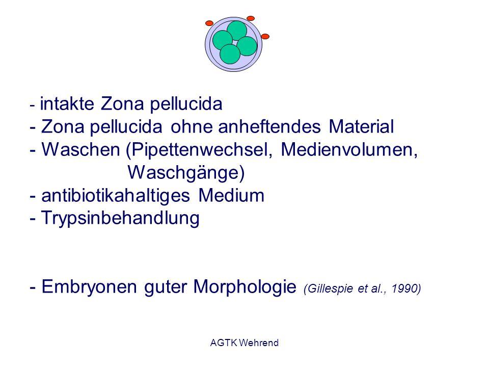 Embryonen guter Morphologie (Gillespie et al., 1990)