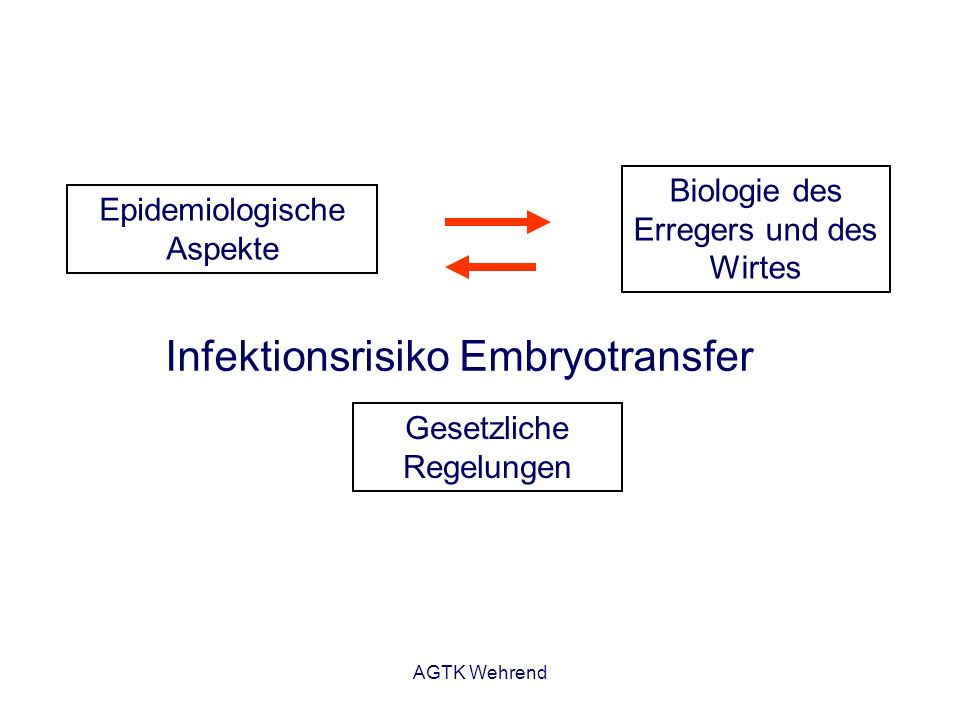 Infektionsrisiko Embryotransfer