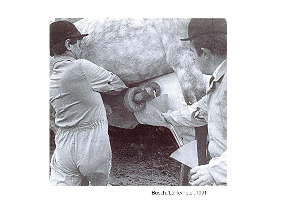 Busch,/Lühle/Peter, 1991