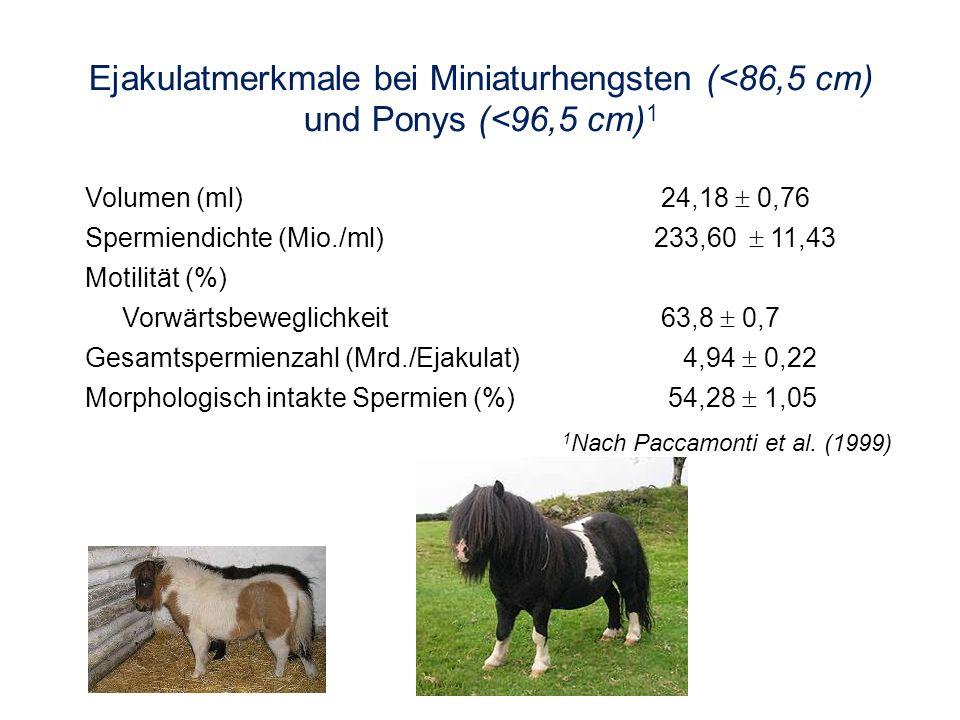 Ejakulatmerkmale bei Miniaturhengsten (<86,5 cm) und Ponys (<96,5 cm)1