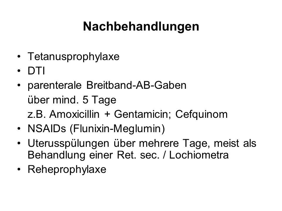 Nachbehandlungen Tetanusprophylaxe DTI parenterale Breitband-AB-Gaben