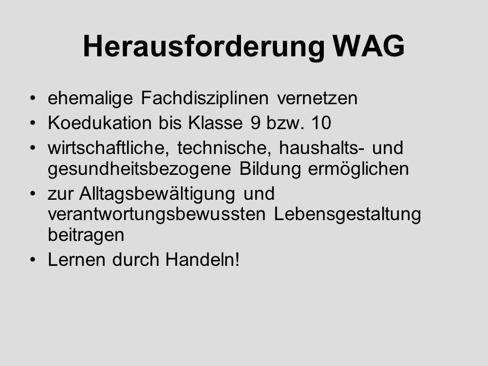Herausforderung WAG ehemalige Fachdisziplinen vernetzen