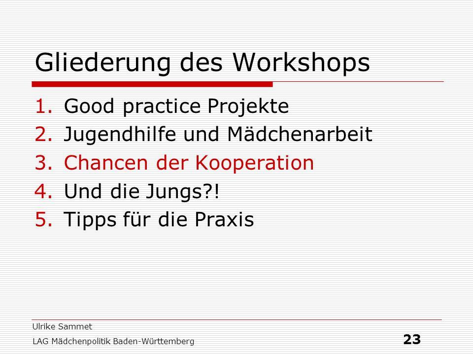 Gliederung des Workshops