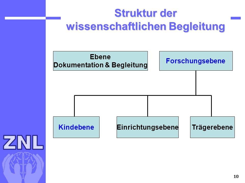 Struktur der wissenschaftlichen Begleitung